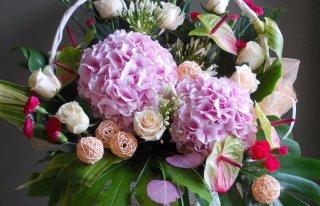 Kwiaciarnia Strelicja Gdynia
