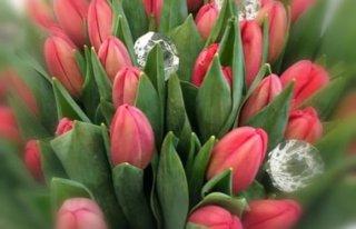 Kwiaciarnia Galeria Nisko