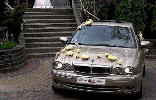 Luksusowy Jaguar do ślubu Dębica