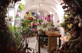 Kwiaciarnia Calla  Pawlica Tarnowskie Góry