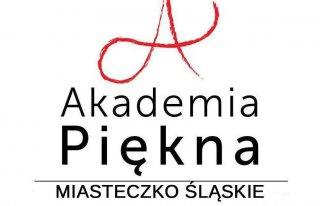 Akademia Piękna Miasteczko Śląskie Miasteczko Śląskie
