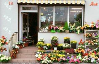 Kwiaciarnia Eli Bień Małogoszcz