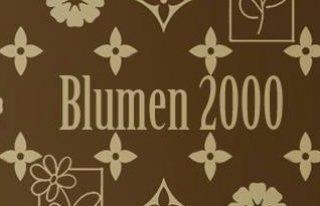 Kwiaciarnia Bydgoszcz Blumen2000 Bydgoszcz