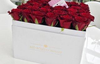 Red Roses Company Katowice