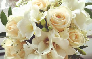 Kwiaciarnia KARELLO Działdowo