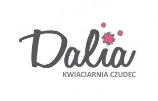 Dalia Kwiaciarnia-Czudec Czudec