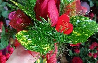 Kwiaciarnia Margaretka Skoczów Skoczów