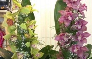 Kwiaciarnia Kwiaty u Sylwii Tczew