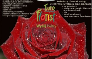 Kwiaciarnia Bell Flori Katowice