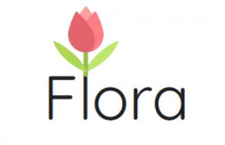 Kwiaciarnia Flora-studio.pl - Zabrze, Mikulczyce Zabrze