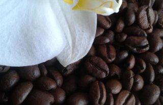 Kwiaciarnia KAWA Zawiercie