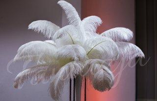Dekoracje Ślubne Fantazja Krasnystaw