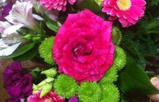 Kwiaciarnia Verdo Decor Gdańsk
