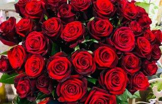 Kwiaciarnia Rosa Bytom Odrzański