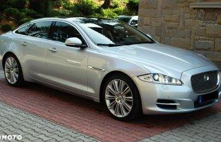 Luksusowy Jaguar Rzeszów