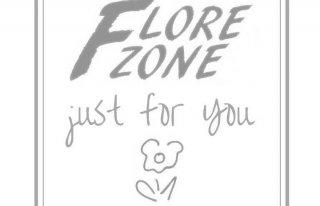 Flore Zone - Magiczny Świat Moniki Warszawa
