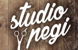 Studio Fryzjerskie Pegi & Barber Shop Bielsko-Biała