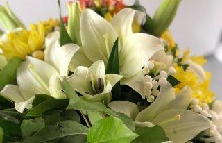 Kwiaciarnia Nowa Konin