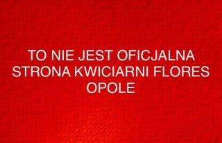 Kwiaciarnia Flores Opole