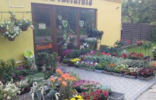 Kwiaciarnia Soraja w Bytowie Bytów