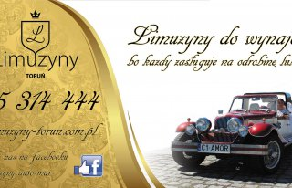 limuzyny-torun.com.pl Toruń