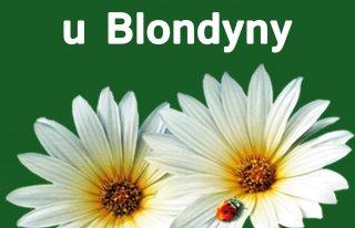 Kwiaciarnia u Blondyny Mysłowice