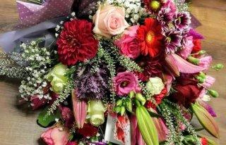Kwiaciarnia Dalia     Edyta Popielarska Toruń