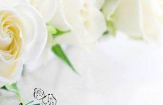 Galeria Kwiatów Wałbrzych Wałbrzych
