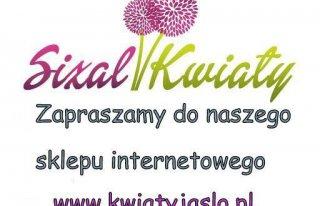 Kwiaciarnia Sizal Jasło