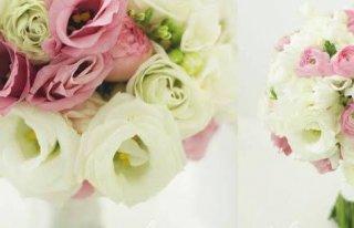Kwiaciarnia Florista Zielona Góra