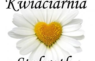 Kwiaciarnia Stokrotka Bełchatów