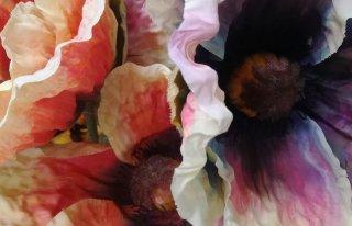 Kwiaciarnia Magiczny Zakątek Grudziądz Grudziądz