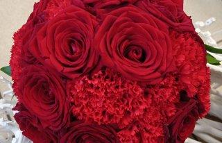 Kwiaciarnia Kwiaty od Izy Zambrów Zambrów