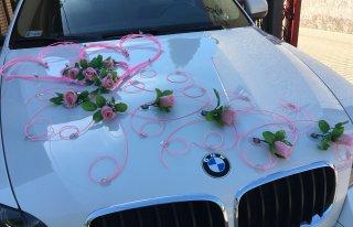 BMW Łapy