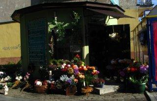 """Kwiaciarnia""""za przystankiem"""" Tarnów"""