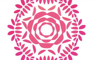 Rosa Garden Rzeszów