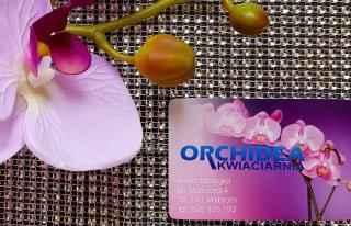 Kwiaciarnia Orchidea Wolbrom