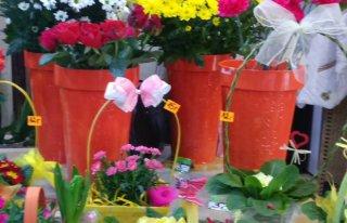 """Kwiaciarnia """"Kwiaty u Agaty """" Sulechów"""