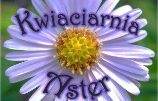 Kwiaciarnia ASTER Olsztyn