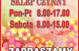 Kwiaciarnia Dominika Lidzbark Warmiński