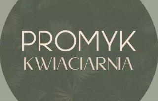 Kwiaciarnia Promyk Justyna Majewska Mława