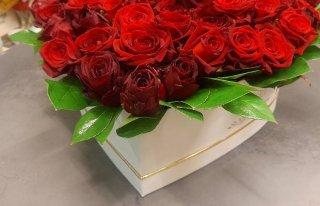Kwiaciarnia Hortus Nowy Targ