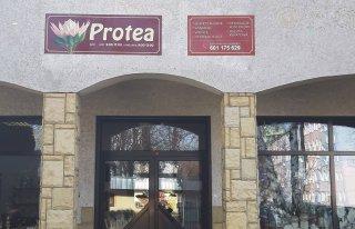 Kwiaciarnia Protea Nysa