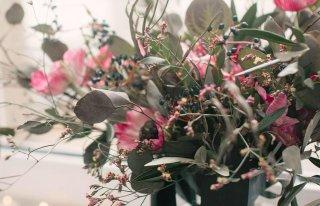 Kwiaciarnia Lilia Kępno