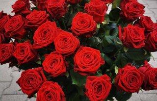 Kwiaciarnia Kaprys Nowogard Nowogard