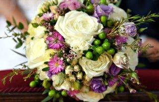 Kwiaciarnia Dorota Ostroróg