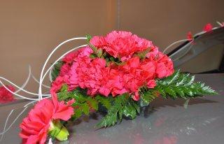 Kwiaciarnia Goździk Ciechanów