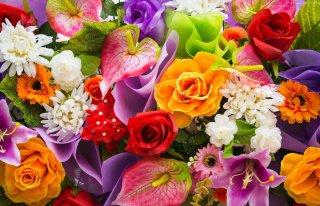 Kwiaciarnia Bukiecik Sępopol