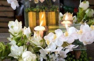 """Kwiaciarnia """"Orchidea"""" Radzymin Radzymin"""