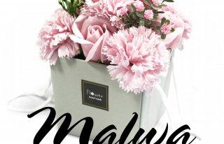 """Kwiaciarnia """"Malwa"""" Kętrzyn"""